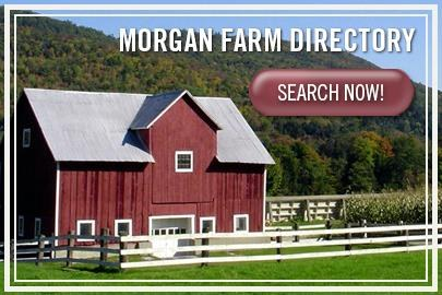 Morgan Farm Directory
