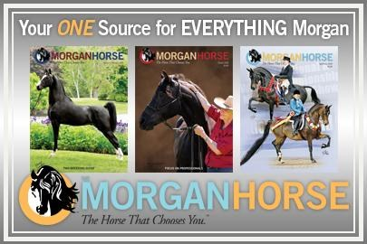 The Morgan Horse, the official journal of the breed for over 75 years