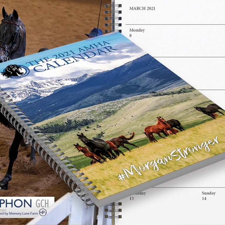 Morgan Stronger Weekly Planner