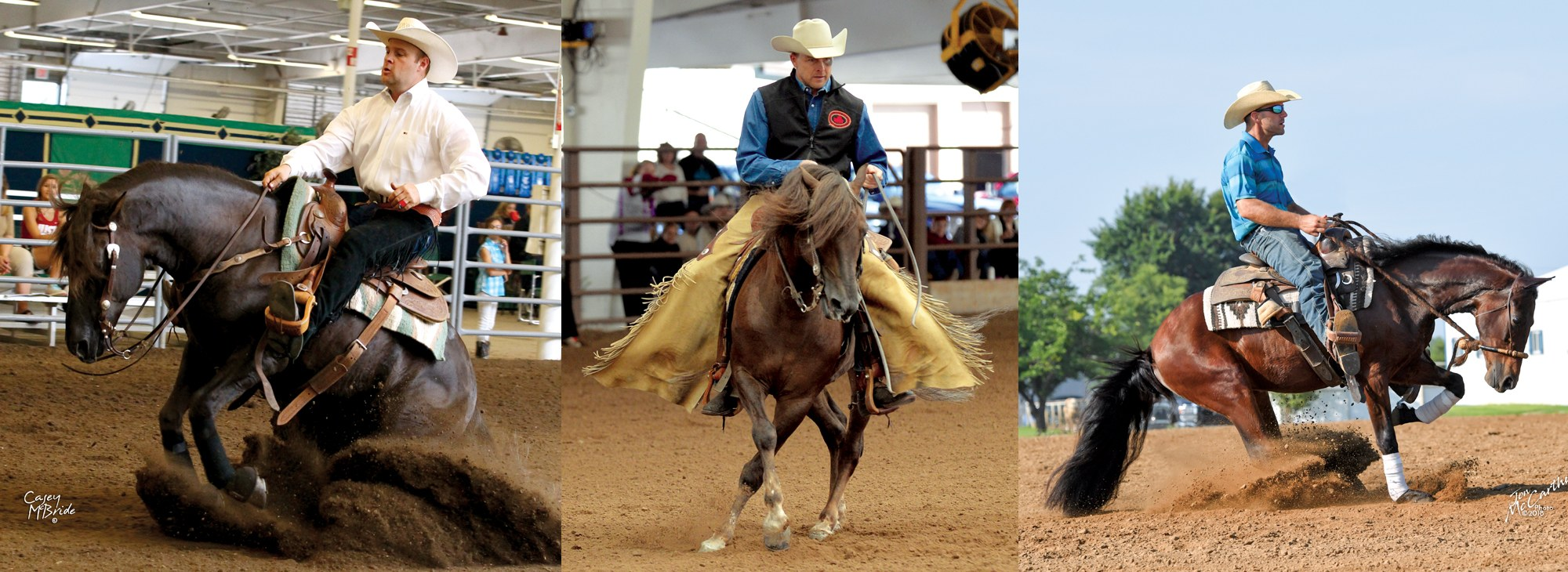 Three Reining Photographs