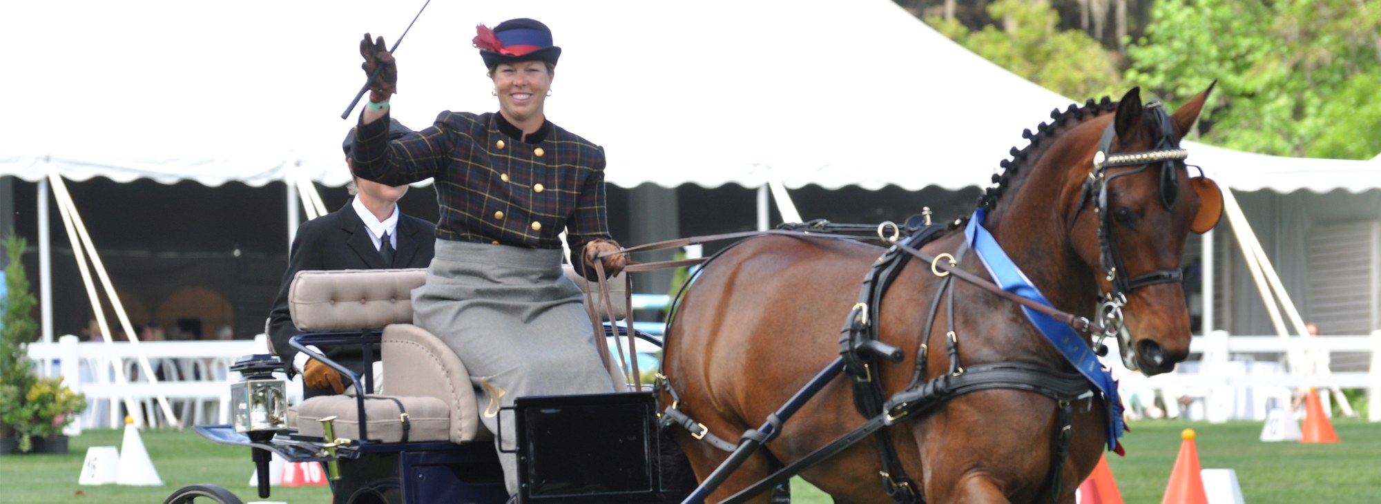 Woman waving driving her Carriage Horse