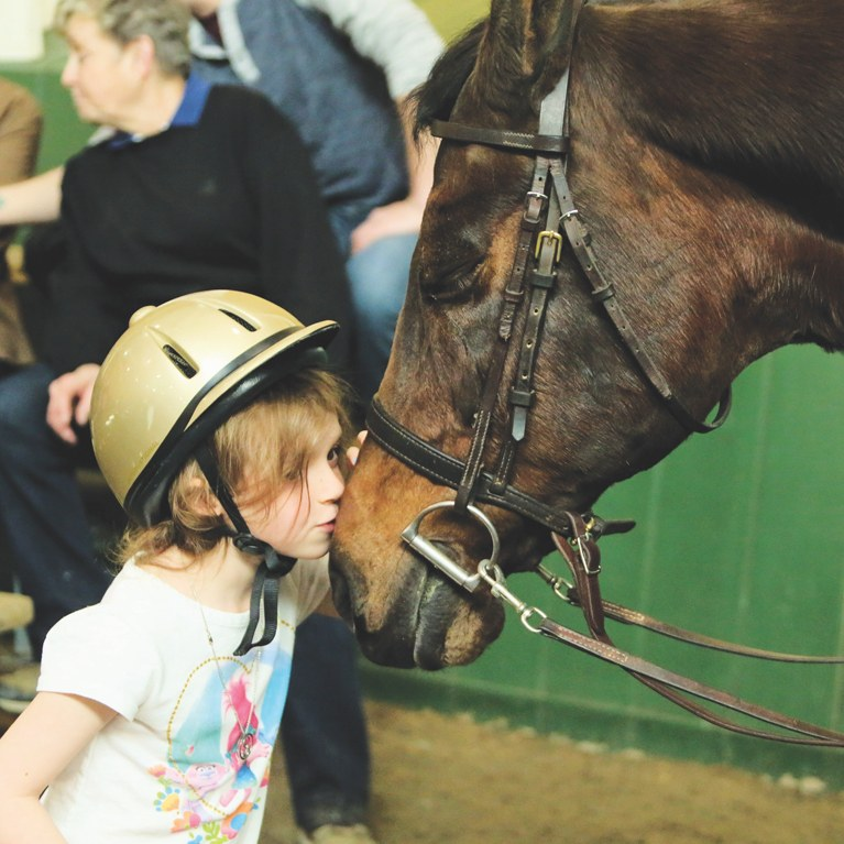 Little girl kissing the nose of a Morgan horse