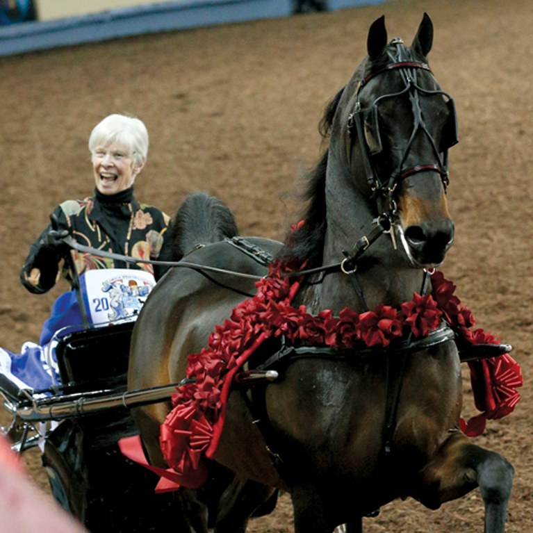 Smiling Driver on her Show Horse