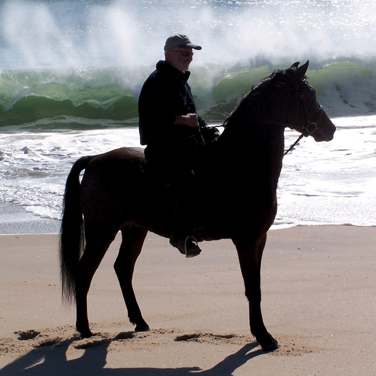 Man on his Morgan by the sea