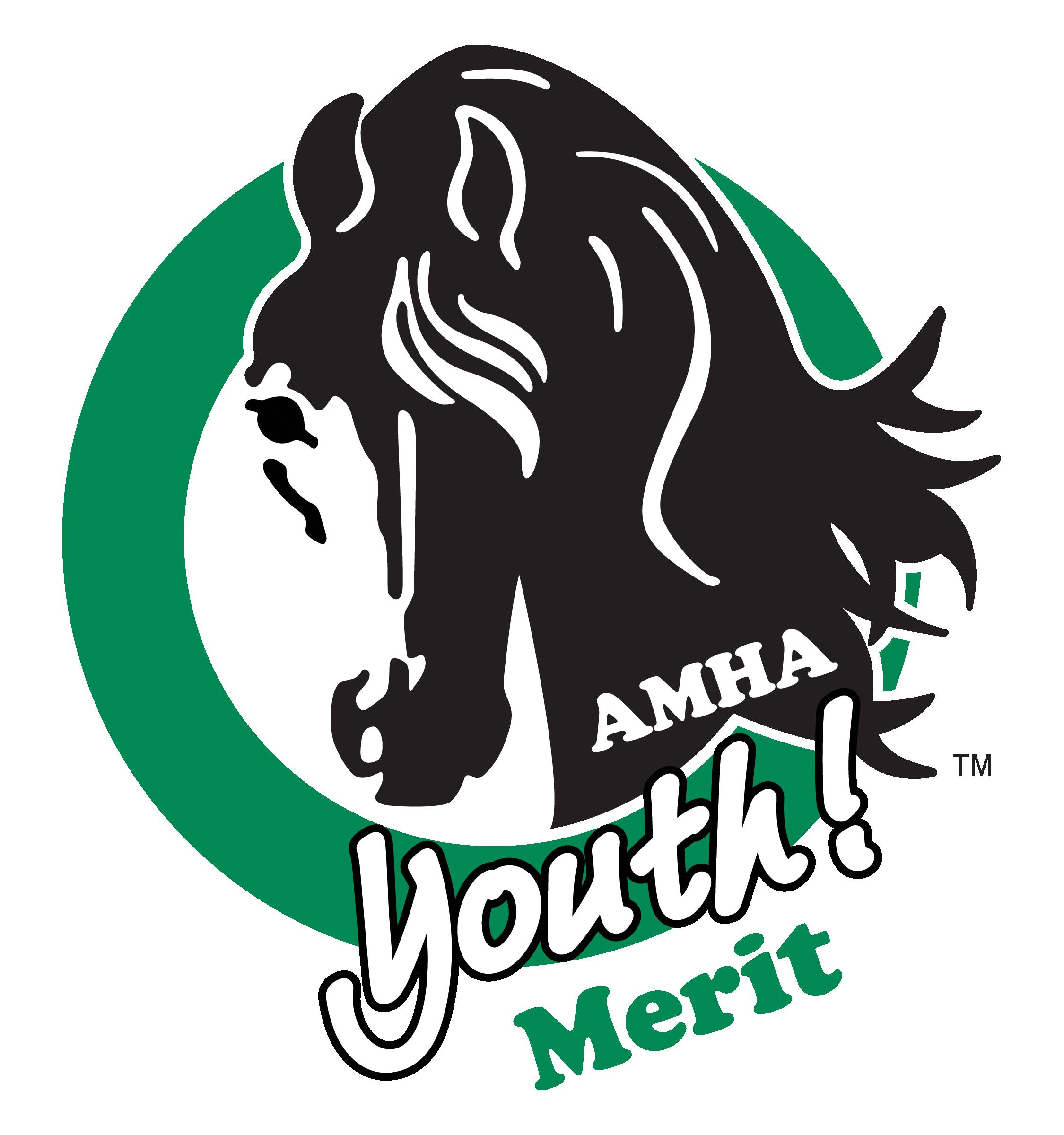 news_amhayouth_logo2021_merit__1.png