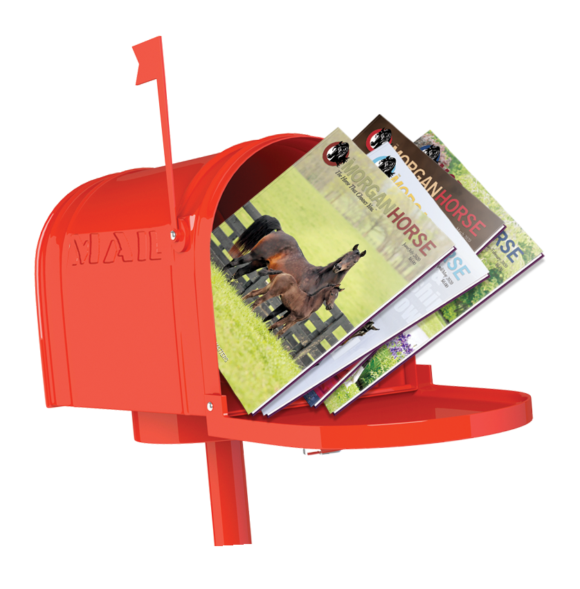 news_september_issue_mailbox.png