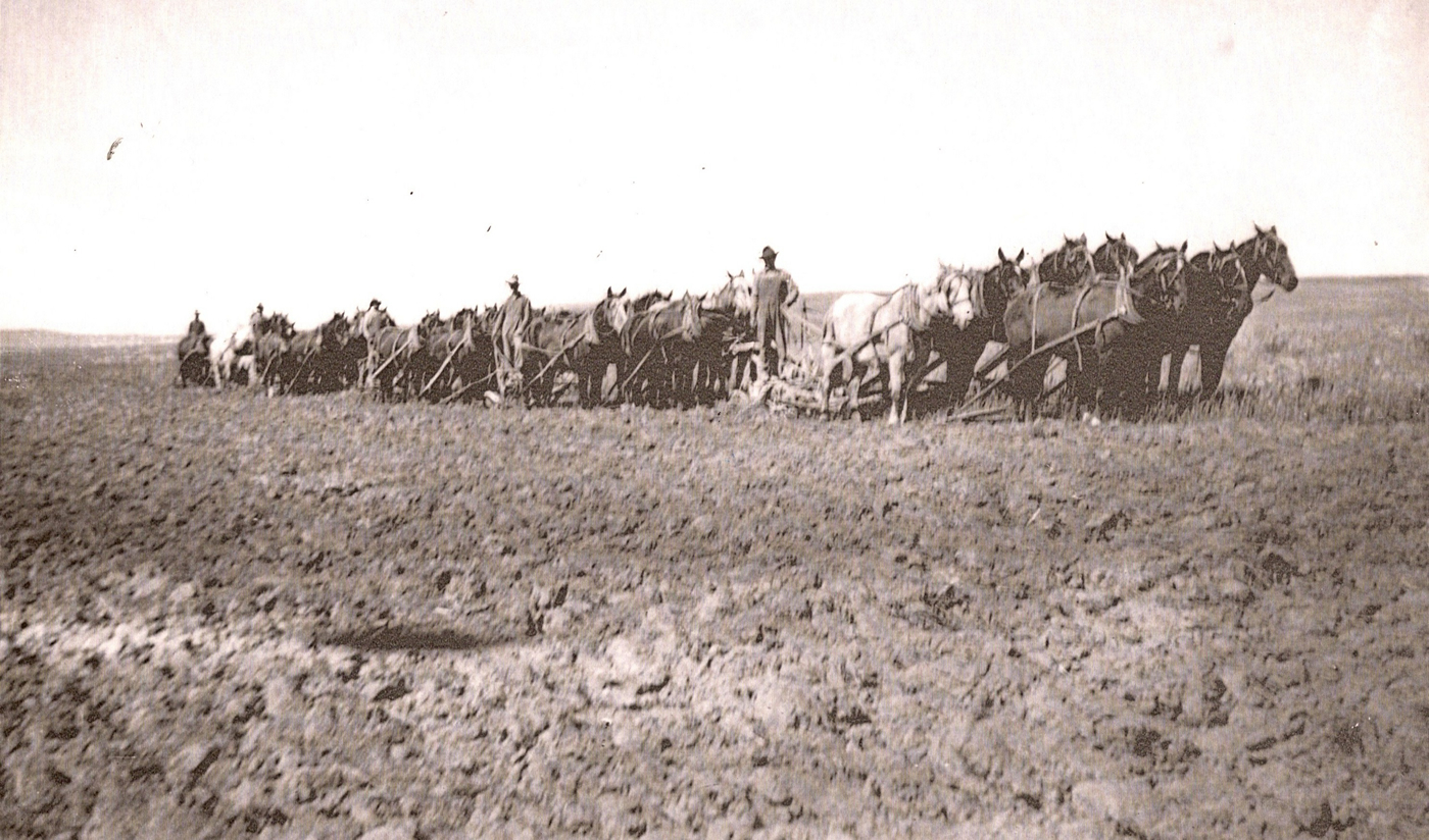 1930's farming-OJ Neeley in front