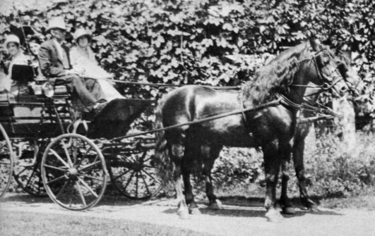 Ashbrook and Ne Komia hitched as a pair and driven in the Fourth of July Celebration in Randolph, Vermont in 1928.