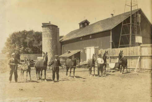 J. J. Lynes and his sons on their farm with a string of their Morgan horses. Photo believed to have been taken around the time J. J. Lynes retired from the farm in 1919. Donated by Meredith Sears.
