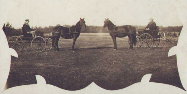 J. J. Lynes with one of his sons and their Morgan carriage horses.